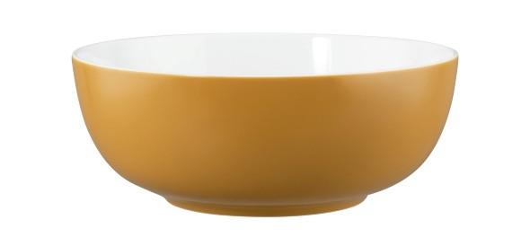 Life Molecule Amber Gold Foodbowl 20cm